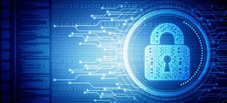 Ciberseguros, ramo del sector en crecimiento