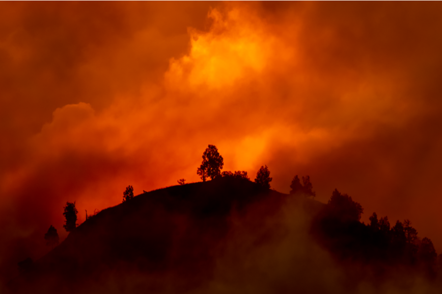 California enfrenta la peor temporada de incendios que ha visto en décadas